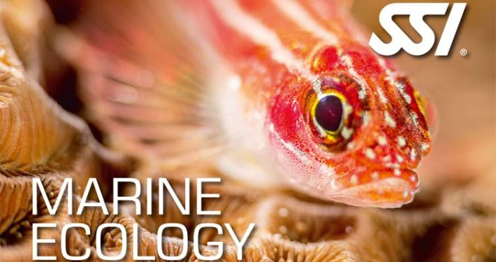 SSi Specialty Marine Ecology